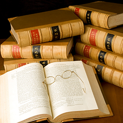 government contract attorneys